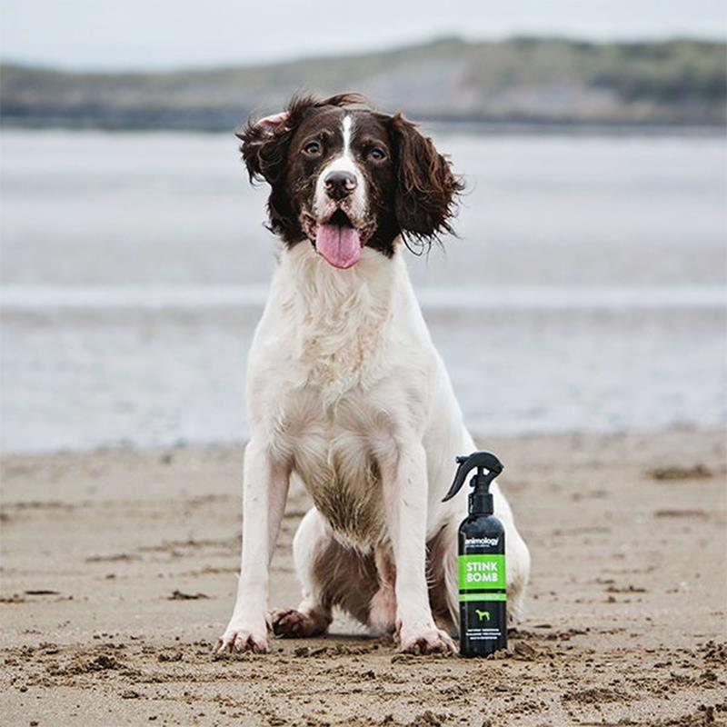 Animology Stink Bomb Ferahlatıcı Köpek Spreyi 250 Ml
