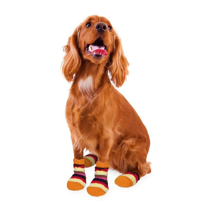 Karlie Köpek Çorabı 2li Medium Turuncu- Beyaz