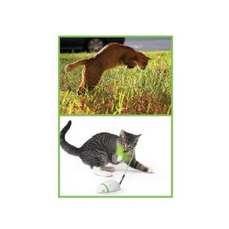 Petstages Kuyruğu Hareketli ve Sesli Fare Kedi Oyuncağı