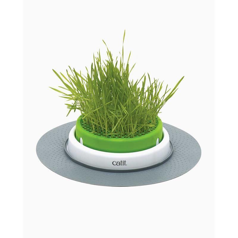 Catit Senses Grass Planter Kedi Çimi Oyun Merkezi