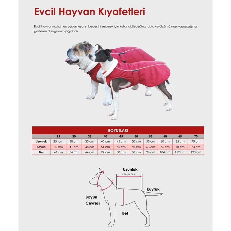 Reddingo Kırmızı Köpek Yağmurluğu 65 Cm