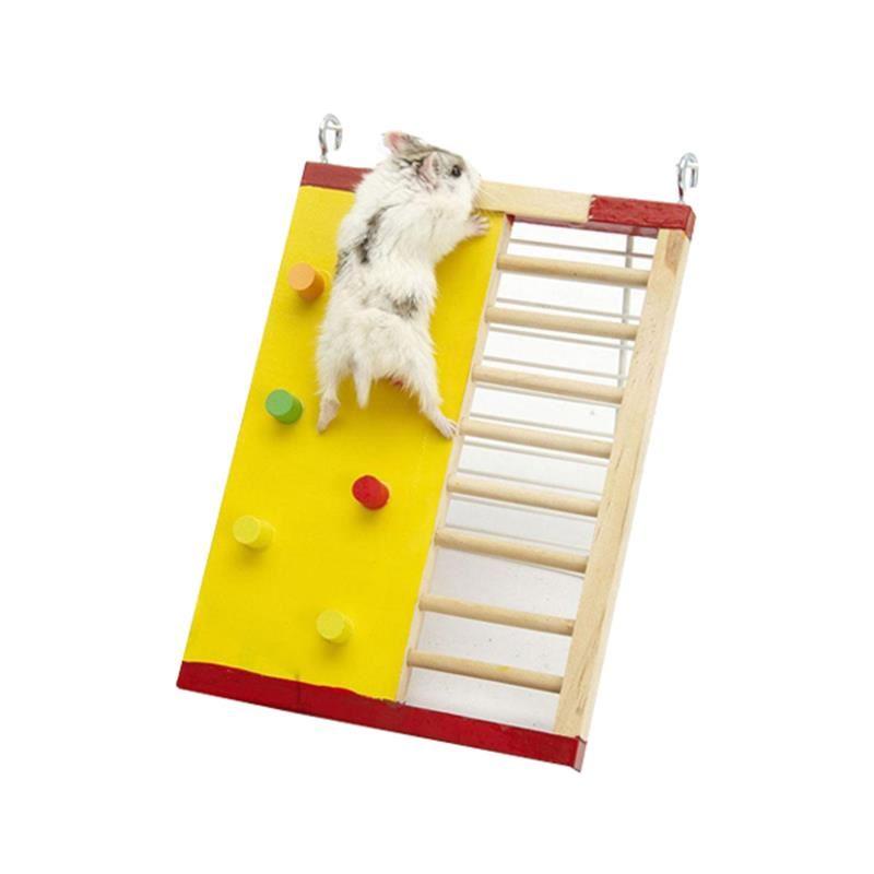 Carno Hamster Oyuncağı Gökkuşağı Merdiven