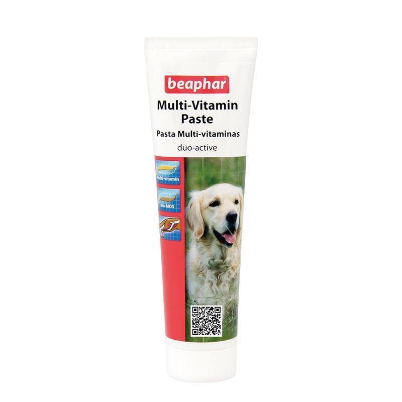 Beaphar Duo Active Köpek Vitamin Macunu 100 Gr
