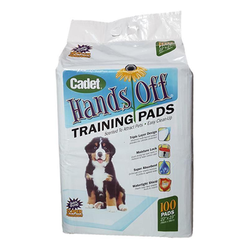 Cadet Köpek İçin Tuvalet Alıştırma Pedi 56x58 100 lü