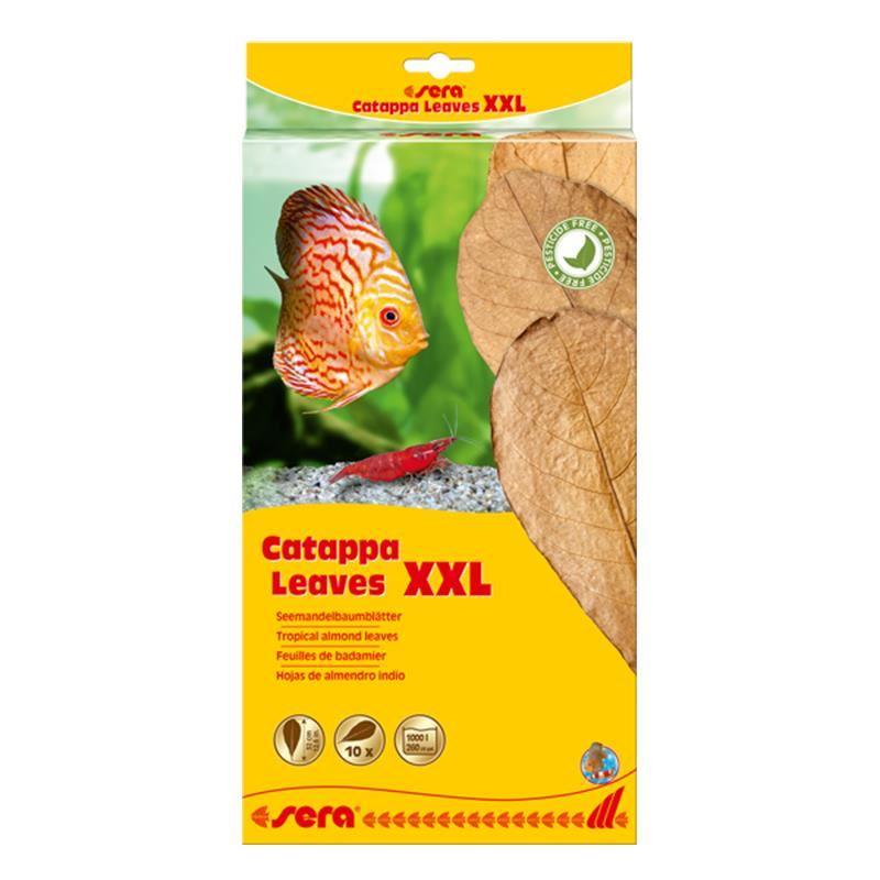 Sera Catappa Yaprağı XXL 32 Cm 10lu Paket