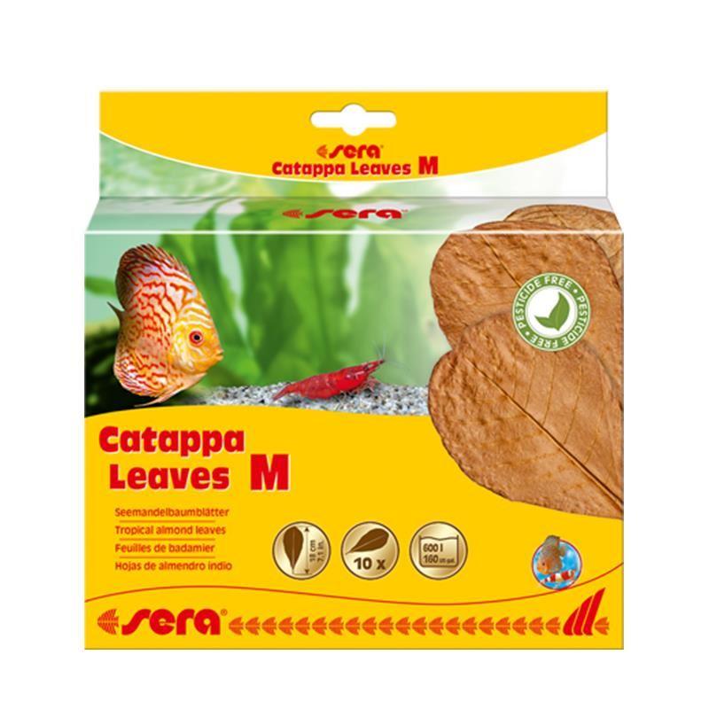Sera Catappa Yaprağı M 18 Cm 10lu Paket