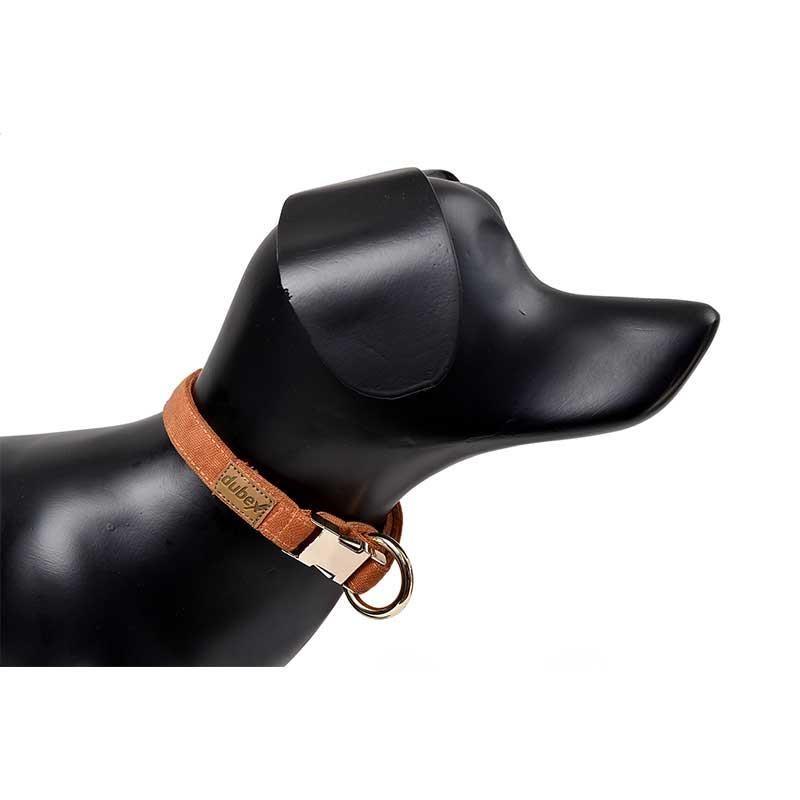 G-Dog Köpek Boyun Tasması Turuncu S-M
