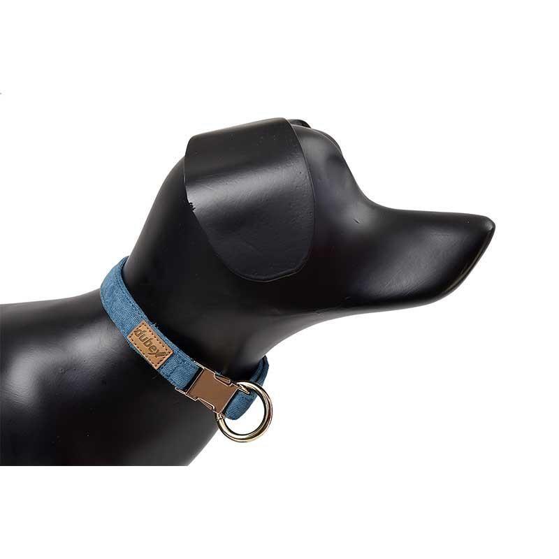 G-Dog Köpek Boyun Tasması Turkuaz M-L