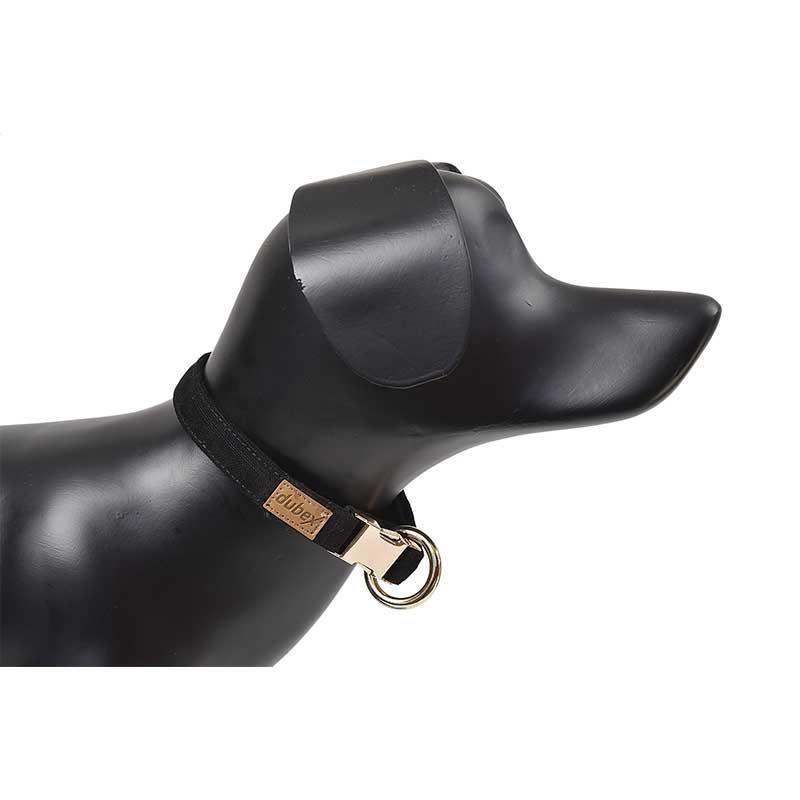 G-Dog Köpek Boyun Tasması Siyah S-M