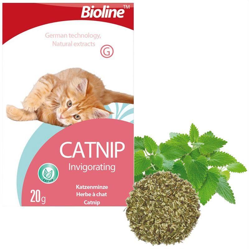 Bioline Catnip Doğal Kedi Nanesi 20 Gr