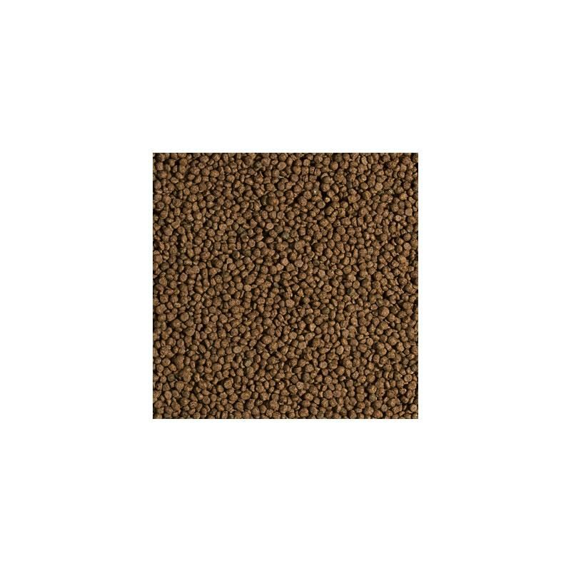 Tropical Koi Wheat Germ ve Garlic Pellet Size S 1000 ml
