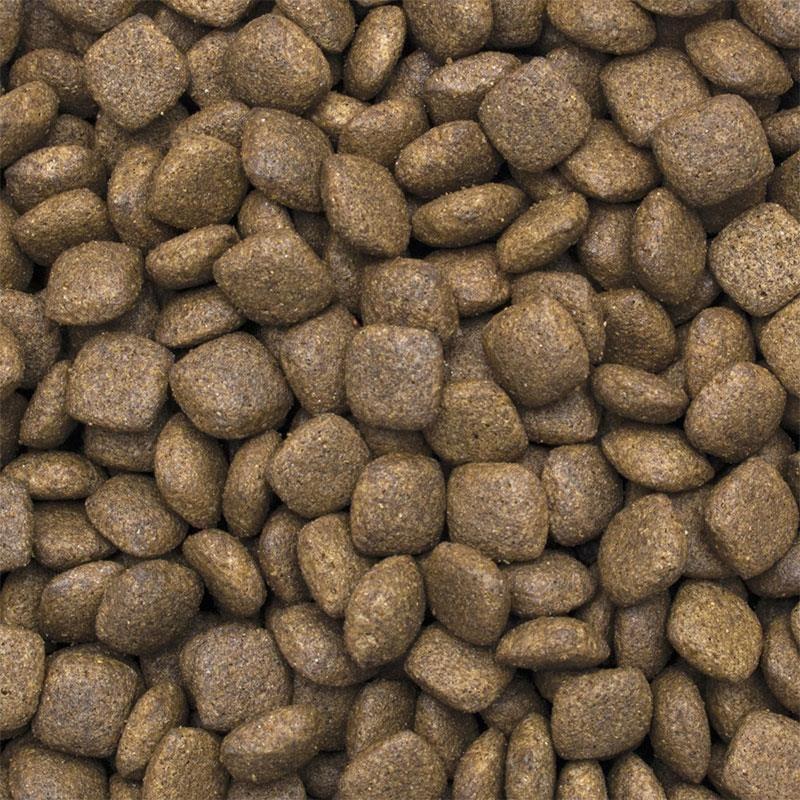 TropiDog Somonlu Yetişkin Köpek Maması Medium Large 2,5 kg