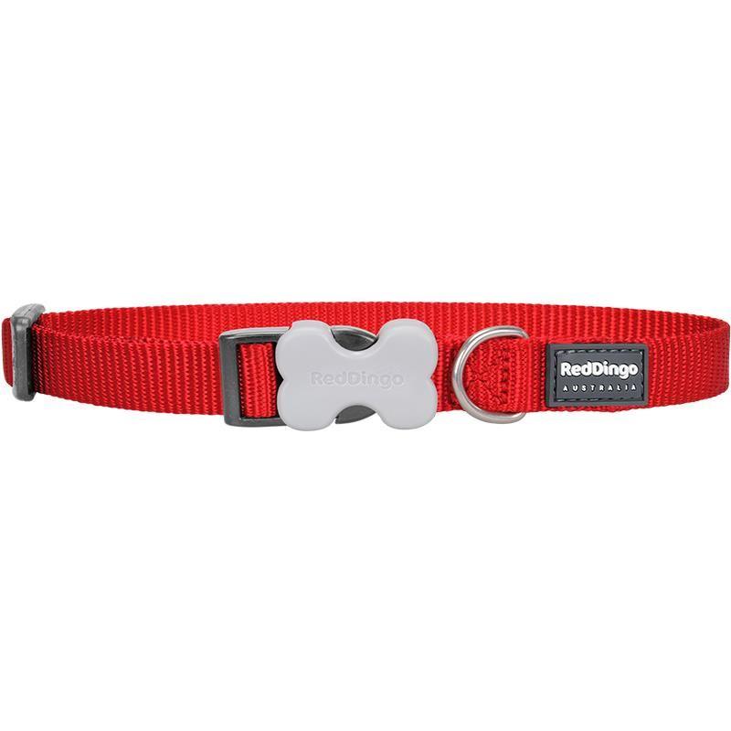Reddingo Klasik Kırmızı Köpek Boyun Tasması 25 Mm