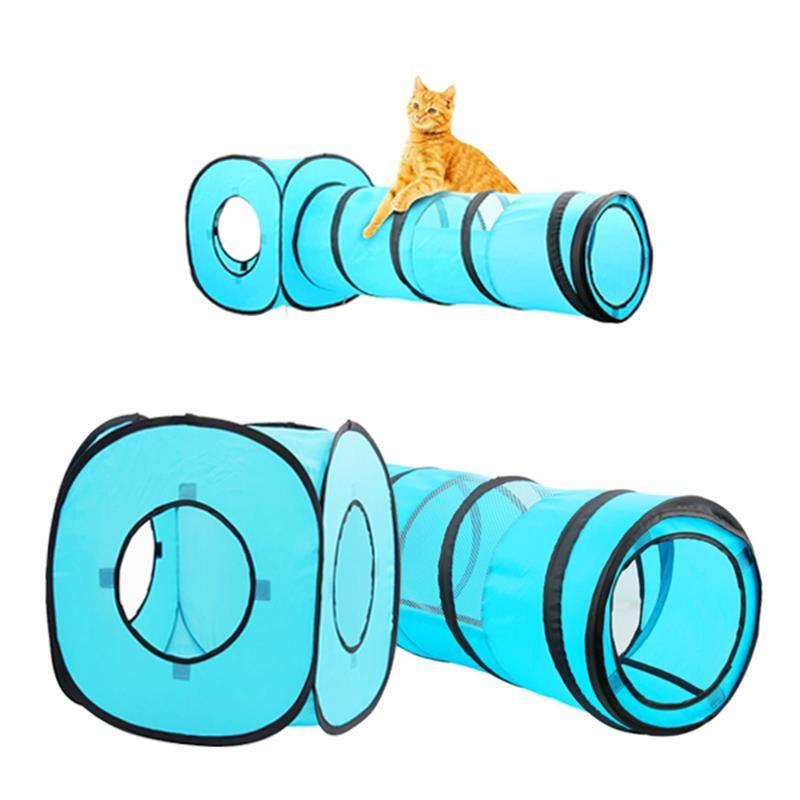 Pawise Kedi Tüneli ve Küpü