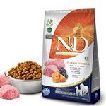 ND Pumpkin Balkabaklı Kuzu Etli Medium Maxi Tahılsız Köpek Maması 2,5 Kg