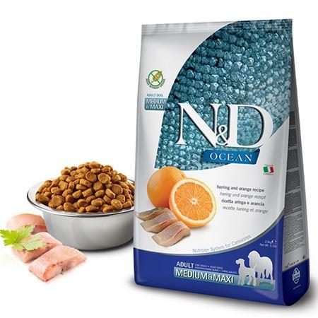 ND Ocean Balıklı Portakallı Tahılsız Yetişkin Köpek Maması 2.5 Kg