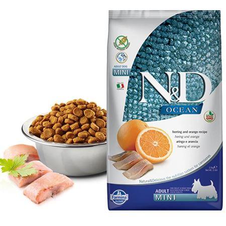 ND Ocean Balık Portakallı Tahılsız Küçük Irk Köpek Maması 2.5 Kg